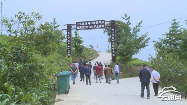 云阳县农业农村委到龙角镇开展中药材种植技术培训―云阳网