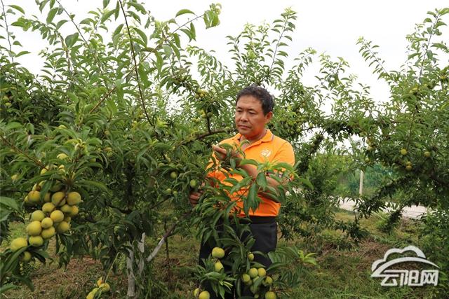 http://www.cqsybj.com/chongqingfangchan/136754.html
