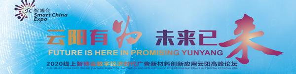 2020线上中国国际智博会云阳高峰论坛
