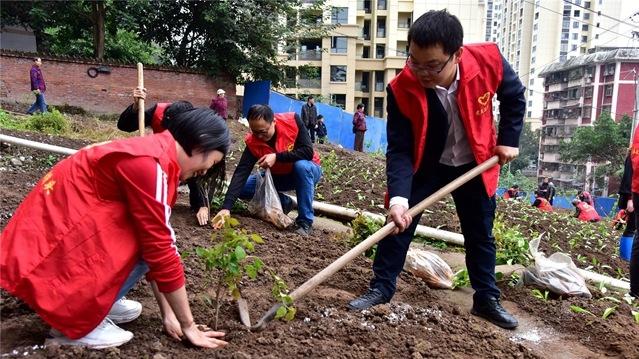 """张家坝社区开展""""我为祖国植10棵树""""秋季植树活动"""