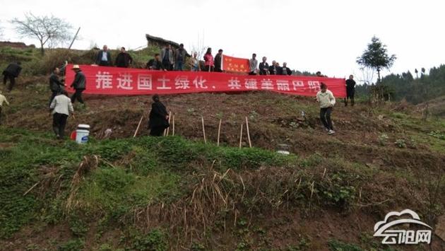 巴阳镇积极推动绿色经济发展