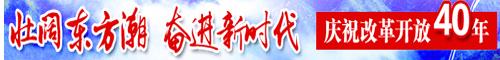 壮阔东方潮 奋进新时代--庆祝改革开放40周年