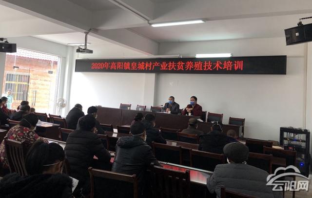 县畜牧发展中心:送技术到皇城村 产业扶贫暖人心—云阳网